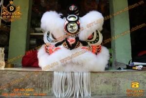 Đầu Lân Mekong Lông Cừu Trắng